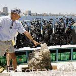 """Un capitel corintio romano recien sacado del agua. Barco """"Princess Duda"""", lugar de trabajo de Franck Goddio. Anclado en la bahia de puerto Este ALEJANDRIA. Egipto"""