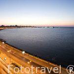 Bahia del Puerto Este. La Corniche. Ciudad de ALEJANDRIA. Egipto