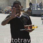 Camarero atendiendo las terrazas con bebida en la zona de Ras El Tin. Ciudad de ALEJANDRIA. Egipto