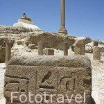 Antiguo templo de Serapis y la columna atribuida a Pompeyo, tiene 30mts de alto y circunferencia de 9mts, erigida en el 298 d.C por Publio, el prefecto de Egipto. En granito rojo. ALEJANDRIA. Egipto