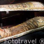 Momia del periodo tardio egipcio. Decoradas con los cuatro hijos de Horus. Hecha en madera pintada. Museo Nacional de Alejandria. Ciudad de ALEJANDRIA. Egipto