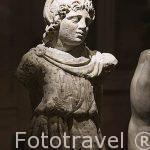 Escultura del periodo Helenistico en marmol. Museo Nacional de Alejandria. Ciudad de ALEJANDRIA. Egipto