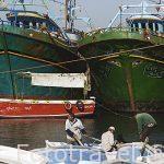 Puerto pesquero y embarcaciones cerca del fuerte de Qaitbay. Ciudad de ALEJANDRIA. Egipto