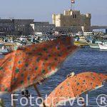 Sombrillas en la playa del puerto Este al fondo el fuerte de Qaitbay. Ciudad de ALEJANDRIA. Egipto