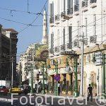 Calle Al Eskandar Al Akbar. Ciudad de ALEJANDRIA. Egipto