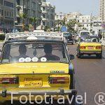 Taxistas. ALEJANDRIA. Egipto