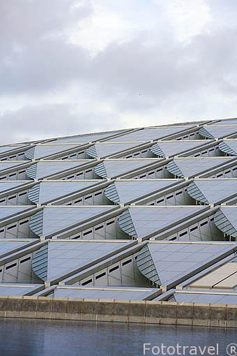Detalle del edificio de la Biblioteca Alejandrina. Ciudad de ALEJANDRIA. Egipto