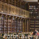 Biblioteca de la facultad de Geografia e Historia de princpios del S.XX. Santiago de Compostela. Ciudad Patrimonio de UNESCO. A Coruña. España