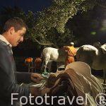 Ensillando los caballos en las cuadras de un vecino de San Bartolome de Pinares. Avila. Castilla y León. España