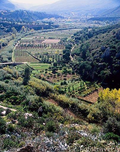 Campos de cultivo a orillas del río Turia. CHULILLA: Valencia. Comunidad Valenciana. España