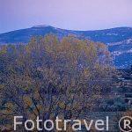 Paisaje montañoso en la Sierra de Tejo. Cerca de SOT DE CHERA. Valencia. Comunidad Valenciana. España