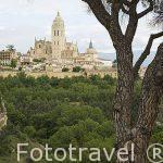 Catedral de Ntra. Sra. de la Asunción y de San Frutos. S.XVI. SEGOVIA. Ciudad Patrimonio de la UNESCO. Castilla y Leon. España