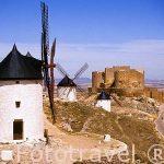 Molinos y Castillo. Consuegra. TOLEDO. Castlla La Mancha. España. Spain.