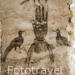 Mano de Fatima o hamsa rodeada con tres pájaros. Sotanos islamicos. En Cardenal Cisneros 12. Ciudad de Toledo. Ciudad Patrimonio de la Humanidad, UNESCO. Castilla La Mancha. España
