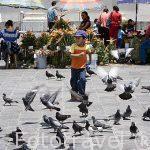 Chicos en la plaza Mayor. Ciudad de GUATEMALA. Centroamerica