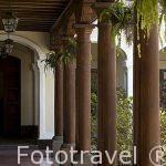 Patio del antiguo colegio de Infantes, actual museo del Arzobispado. Ciudad de GUATEMALA. Centroamerica