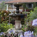 Jardines. Hotel Atitlan, situado a la orilla del lago Atitlan. Poblacion de PANAJACHEL. Departamento de Sololá. Guatemala. Centroamerica