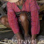 Trenzado de caña proveniente del lago Atitlan para la realización de cesteria. Pueblo de SAN ANTONIO PALOPO. Departamento de Sololá. Guatemala. Centroamerica