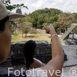 La Plaza Central. Complejo maya de TIKAL. Departamento de Peten. Guatemala. Centroamerica