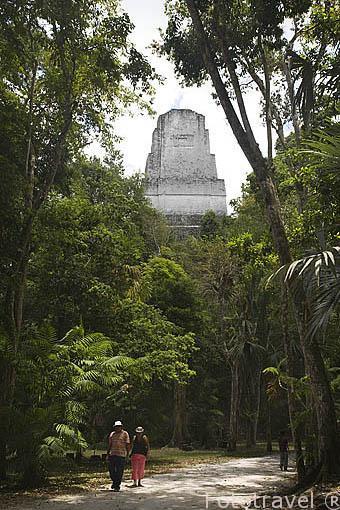 Templo III. Complejo maya de TIKAL. Departamento de Peten. Guatemala. Centroamerica