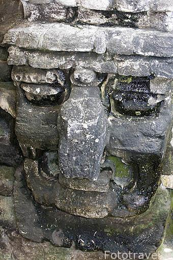 Cara de piedra. Complejo maya de TIKAL. Departamento de Peten. Guatemala. Centroamerica