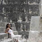 Complejo maya de TIKAL. Departamento de Peten. Guatemala. Centroamerica. MR.086