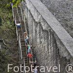 Escaleras de ascenso. Templo V. Complejo maya de TIKAL. Departamento de Peten. Guatemala. Centroamerica
