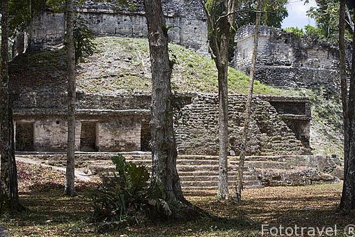 Plaza de los 7 templos. Complejo maya de TIKAL. Departamento de Peten. Guatemala. Centroamerica