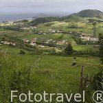 Vista del pueblo de Flamengos. Isla de FAIAL. Azores. Portugal
