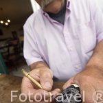 Diente de cachalote tallado con motivo de un barco. Taller de John Van Opstal. Poblacion de Horta. Isla de FAIAL. Azores. Portugal