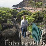 Jardines para pasear. Casa rural Pozinho Bay. Isla de PICO.