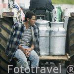 Tractor y bidones de leche en un tractor. Isla de SAO MIGUEL. Azores. Portugal