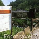 Mazo de Mazonovo. SANTA EULALIA DE OSCOS. Asturias. España