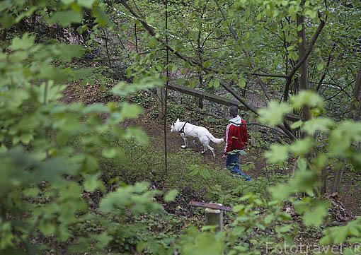 Bosque de Schlossberg. Ciudad patrimonio de la UNESCO de FREIBURG - FRIBURGO. Zona sur de la Selva Negra. Alemania. Germany