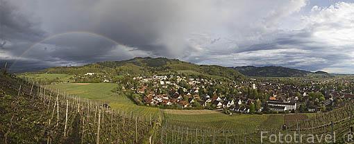 Viñedos y la población de STAUFEN desde el castillo. Zona sur de la Selva Negra. Alemania. Germany