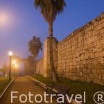 Muro exterior de la alzaba (finalizada en el 835, siendo la primera de estas caracteristicas realizada en España por los musulmanes). MERIDA. Unesco. Badajoz. Extremadura. España