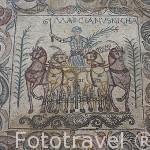 Mosaico de los Aurigas, s.IV D.C. Interior del Museo Nacional de Arte Romano.MERIDA. Ciudad Patrimonio de la Unesco. Badajoz. Extremadura. España