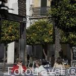 Terrazas en la Plaza de España. MERIDA. Ciudad Patrimonio de la Unesco. Badajoz. Extremadura. España