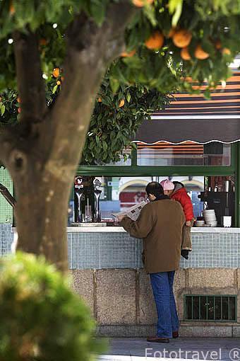 Bar en la Plaza de España. MERIDA. Ciudad Patrimonio de la Unesco. Badajoz. Extremadura. España