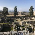 Ruinas de una casa romana en el interior de la alcazaba arabe. MERIDA. Ciudad Patrimonio de la Unesco. Badajoz. Extremadura. España