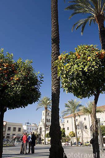 El Ayuntamiento en la Plaza de España. MERIDA. Ciudad Patrimonio Unesco. Badajoz. Extremadura. España