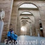 Sala principal. Interior del Museo Nacional de Arte Romano.MERIDA. Ciudad Patrimonio de la Unesco. Badajoz. Extremadura. España