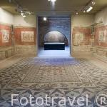 Casa romana. Interior del Museo Nacional de Arte Romano.MERIDA. Ciudad Patrimonio de la Unesco. Badajoz. Extremadura. España