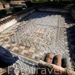 Detalle del mosaico de la Pisa de la Uva. Casa del Anfiteatro. MERIDA. Ciudad Patrimonio Unesco. Badajoz. Extremadura. España