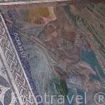 Detalle del mosaico de Cosmologico. Casa del Mitreo. MERIDA. Ciudad Patrimonio Unesco. Badajoz. Extremadura. España