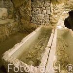 Hipogeo. Necropolis punica en la zona de Puig de Molins. Ciudad de IBIZA. Islas Baleares. España