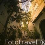 Callejon de la Esperanza rodeado de plantas. Parte alta del casco historico patrimonio de la UNESCO de IBIZA. Islas Baleares. España