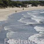 Playa del Mediodia (Migjorn) al sur de la isla de IBIZA. Mar Mediterraneo. Islas Baleares. España