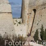 Parque Reina Sofia y las murallas de la ciudad de IBIZA. patrimonio de la Humanidad, UNESCO. Mar Mediterraneo. Islas Baleares. España