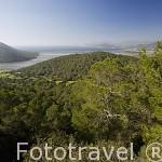 Salinares y paisaje. Zona sur de la isla de IBIZA. Mar Mediterraneo. Islas Baleares. España
